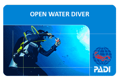 PADI Open Water Diver Course in Koh Samui Island